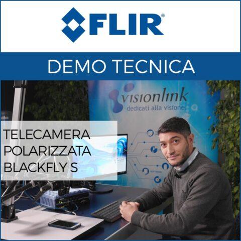 Demo: Telecamera FLIR polarizzata Blackfly S